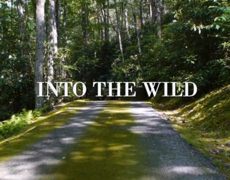 Into The Wild, Prêt-à-porter AH 2018